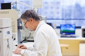 מחקר על צמח המורינגה ותרומתו למלחמה בסרטן