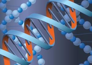 בדיקה גנטית לגילוי סרטן